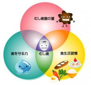 虫歯のできる構図 image-kasai081